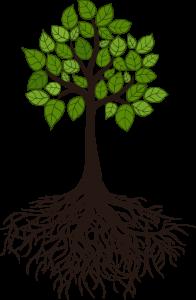 NCEJ - tree